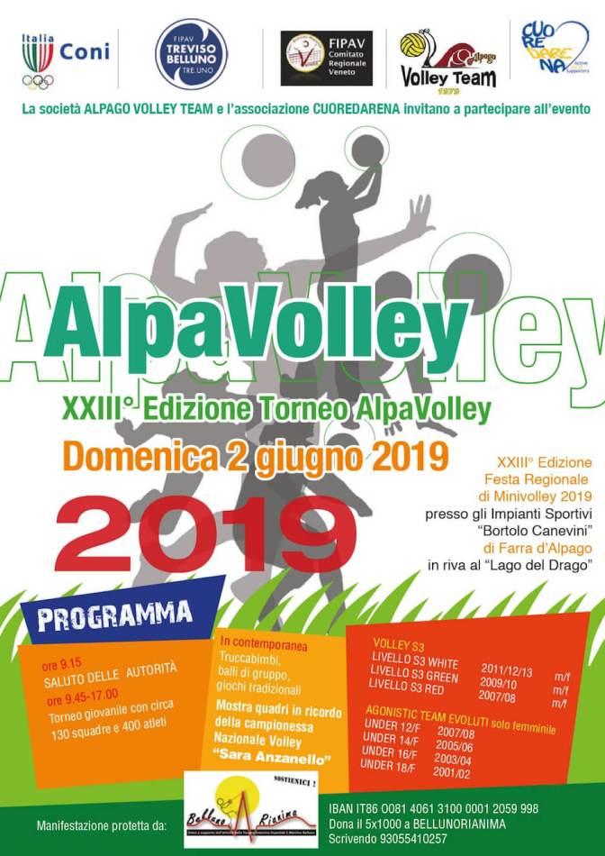 AlpaVolley 2019